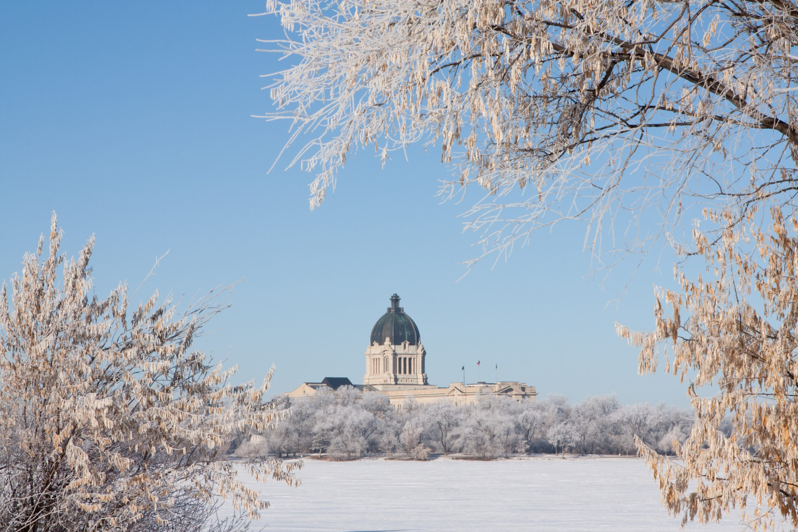 The Saskatchewan Legislative Building in Regina, Saskatchewan, Canada is framed by frost covered trees in winter.  Snow-covered Wascana Lake is in between.
